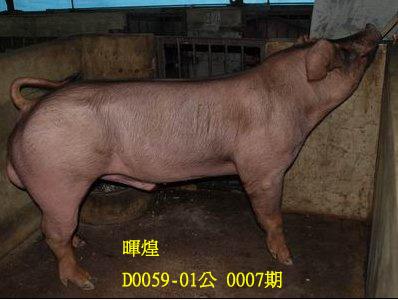台灣動物科技研究所竹南檢定站10007期D0059-01拍賣相片