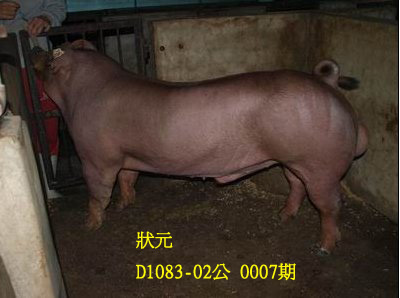 台灣動物科技研究所竹南檢定站10007期D1083-02拍賣相片