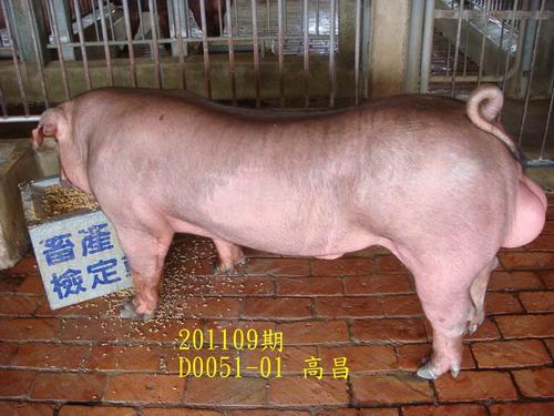 中央畜產會201109期D0051-01拍賣照片