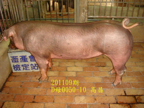 中央畜產會201109期D0050-10拍賣照片