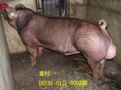 台灣動物科技研究所竹南檢定站10008期D0551-01拍賣相片