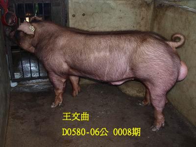 台灣動物科技研究所竹南檢定站10008期D0580-06拍賣相片