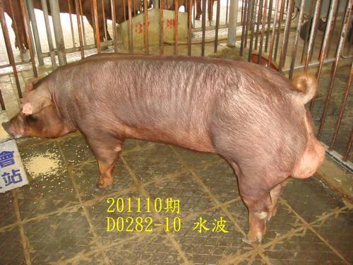 中央畜產會201110期D0282-10拍賣照片