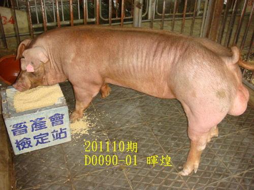 中央畜產會201110期D0090-01拍賣照片