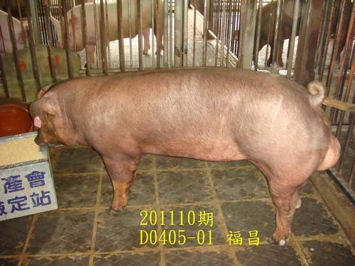 中央畜產會201110期D0405-01拍賣照片