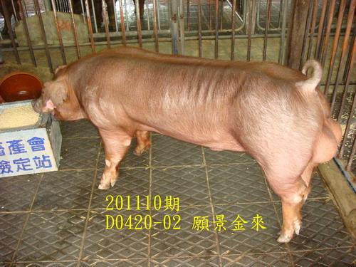 中央畜產會201110期D0420-02拍賣照片