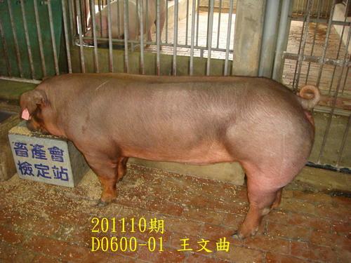 中央畜產會201110期D0600-01拍賣照片