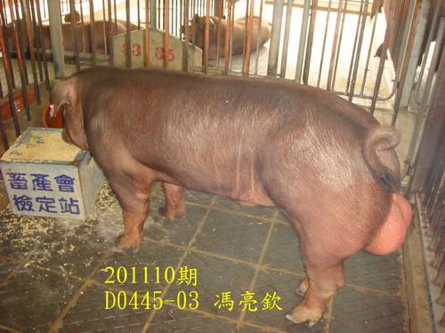 中央畜產會201110期D0445-03拍賣照片