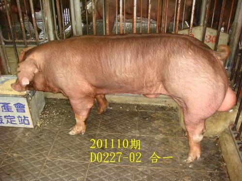 中央畜產會201110期D0227-02拍賣照片