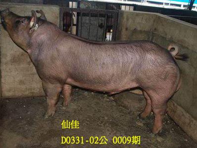 台灣動物科技研究所竹南檢定站10009期D0331-02拍賣相片