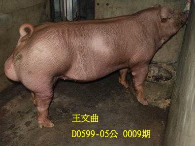 台灣動物科技研究所竹南檢定站10009期D0599-05拍賣相片