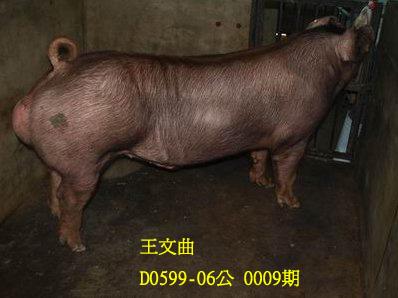 台灣動物科技研究所竹南檢定站10009期D0599-06拍賣相片