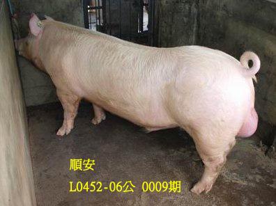 台灣動物科技研究所竹南檢定站10009期L0452-06拍賣相片