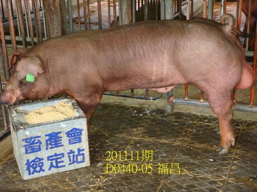 中央畜產會201111期D0440-05拍賣照片