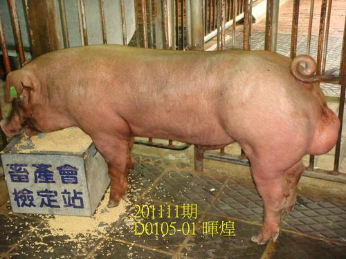 中央畜產會201111期D0105-01拍賣照片