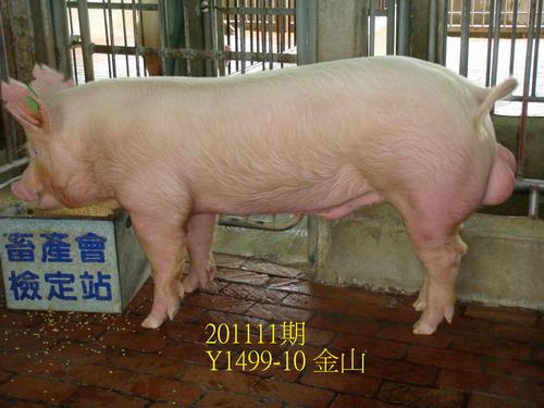 中央畜產會201111期Y1499-10拍賣照片