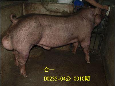 台灣動物科技研究所竹南檢定站10010期D0235-04拍賣相片