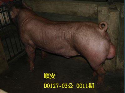 台灣動物科技研究所竹南檢定站10011期D0127-03拍賣相片
