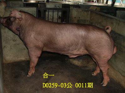 台灣動物科技研究所竹南檢定站10011期D0259-03拍賣相片