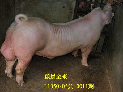 台灣動物科技研究所竹南檢定站10011期L1350-05拍賣相片
