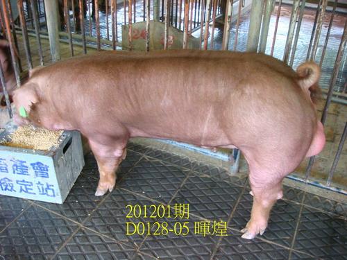 中央畜產會201201期D0128-05拍賣照片