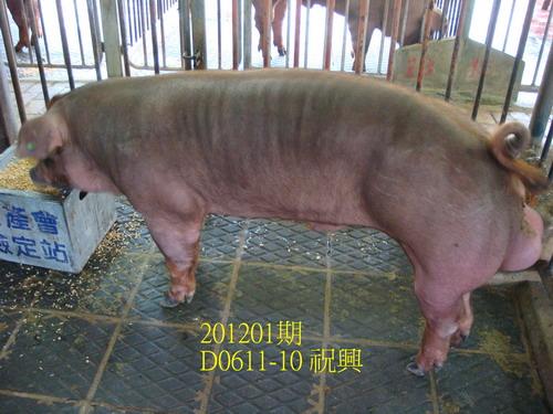 中央畜產會201201期D0611-10拍賣照片