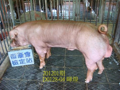 中央畜產會201201期D0128-04拍賣照片