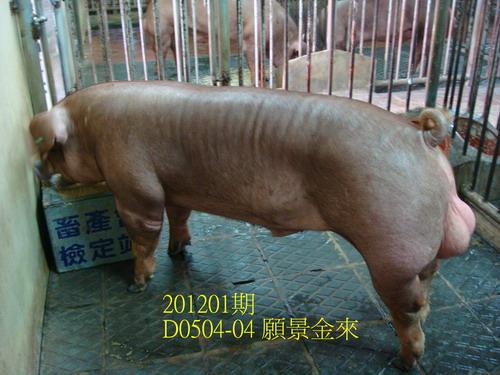 中央畜產會201201期D0504-04拍賣照片