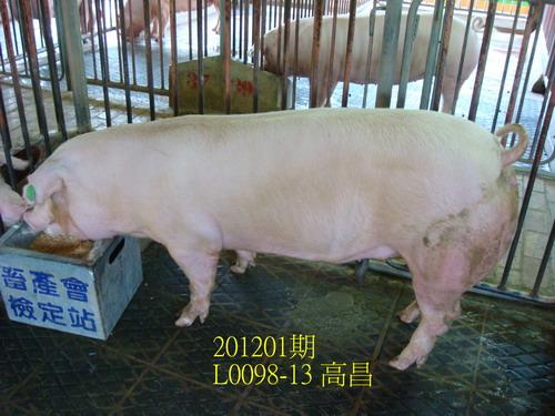 中央畜產會201201期L0098-13拍賣照片