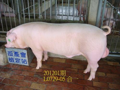 中央畜產會201201期L0729-05拍賣照片