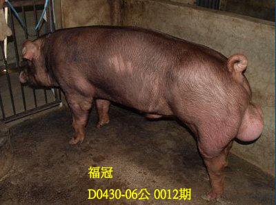 台灣動物科技研究所竹南檢定站10012期D0430-06拍賣相片