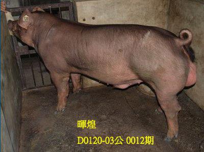 台灣動物科技研究所竹南檢定站10012期D0120-03拍賣相片