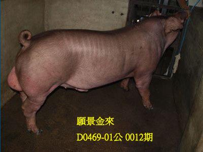 台灣動物科技研究所竹南檢定站10012期D0469-01拍賣相片