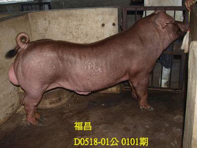 台灣動物科技研究所竹南檢定站10101期D0518-01拍賣相片