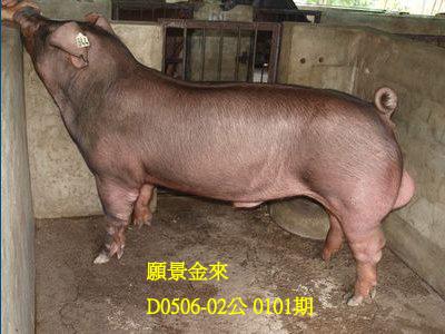 台灣動物科技研究所竹南檢定站10101期D0506-02拍賣相片