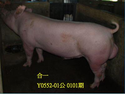 台灣動物科技研究所竹南檢定站10101期Y0552-01拍賣相片