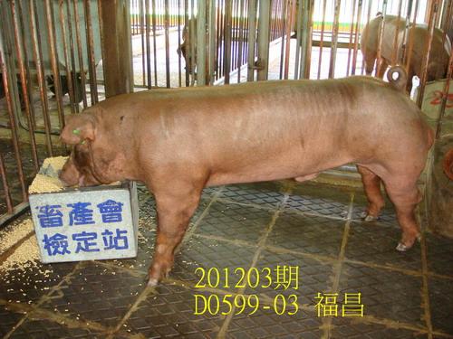 中央畜產會201203期D0599-03拍賣照片