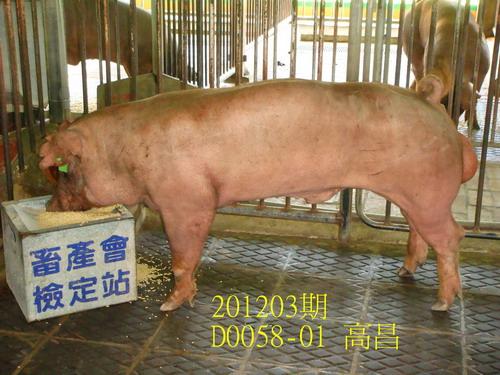 中央畜產會201203期D0058-01拍賣照片