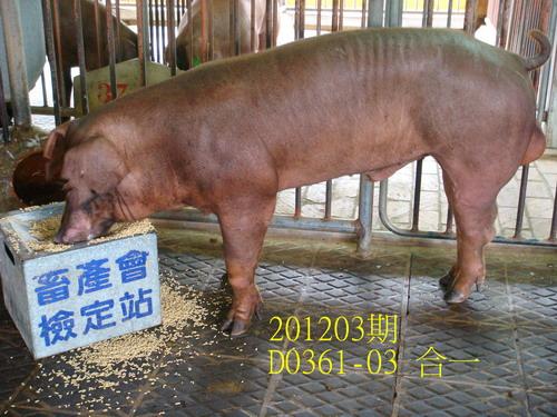 中央畜產會201203期D0361-03拍賣照片