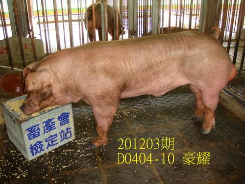 中央畜產會201203期D0404-10拍賣照片