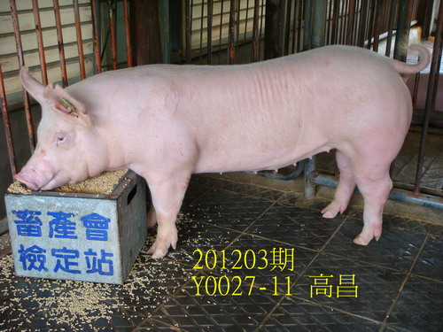 中央畜產會201203期Y0027-11拍賣照片