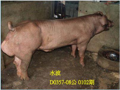 台灣動物科技研究所竹南檢定站10102期D0357-08拍賣相片
