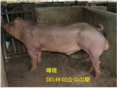 台灣動物科技研究所竹南檢定站10102期D0149-02拍賣相片