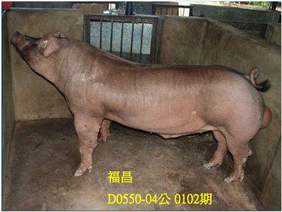 台灣動物科技研究所竹南檢定站10102期D0550-04拍賣相片