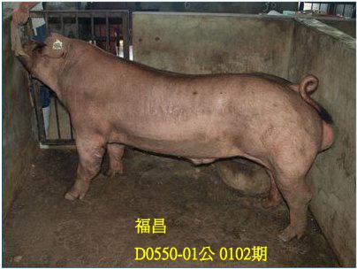 台灣動物科技研究所竹南檢定站10102期D0550-01拍賣相片
