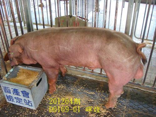 中央畜產會201204期D0169-01拍賣照片
