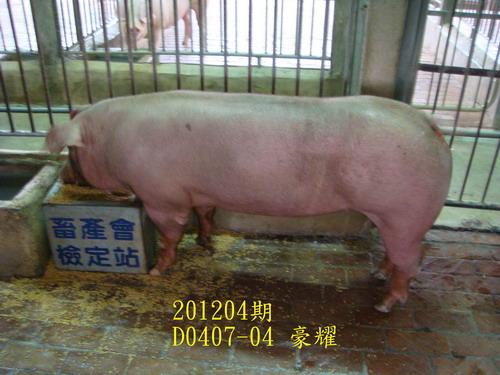 中央畜產會201204期D0407-04拍賣照片