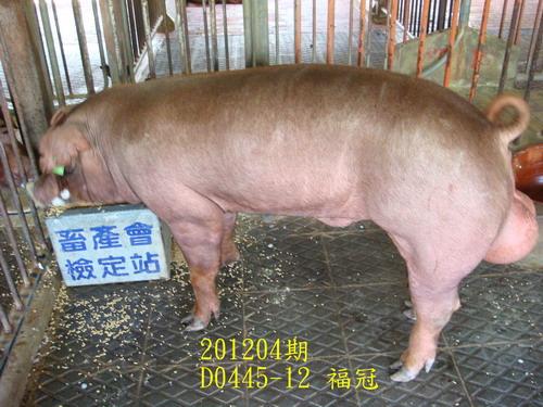 中央畜產會201204期D0445-12拍賣照片