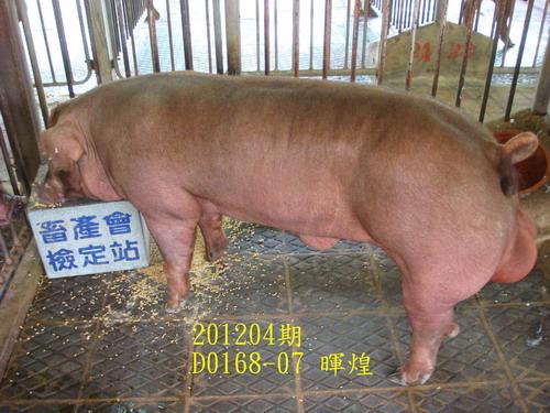 中央畜產會201204期D0168-07拍賣照片
