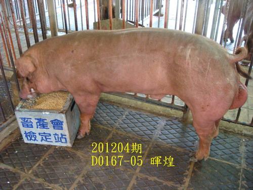 中央畜產會201204期D0167-05拍賣照片
